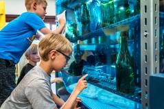 Kan du finde gebisset? I drømmelageret kan børnene gå på jagt, efter genkendelige elementer fra Strids forfatterskab. Det er ikke let at se det under vand, men alle flasker indeholder nøje udvalgte ting og sager. Foto: Christoffer Askman